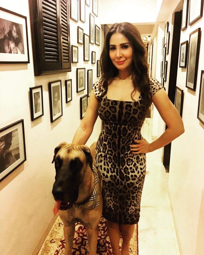 Kim Sharma Pics With Dog