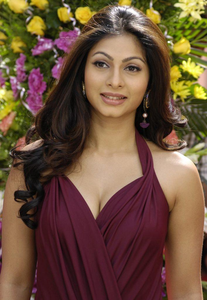 Tanishaa Mukerji Royal Look Images