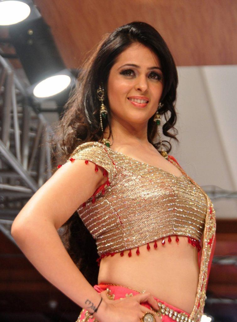 Anjana Sukhani Sexy Navel Photos