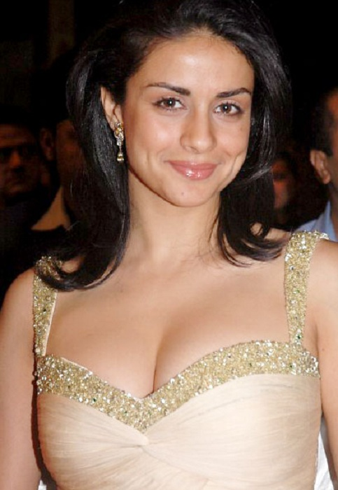 Gul Panag Latest New Sexy Pictures Gallery