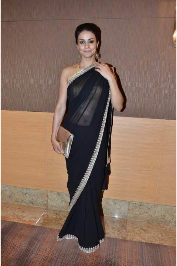 Gul Panag Sexy Pics in Saree