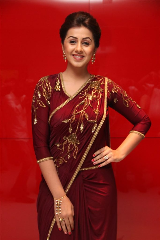 Nikki Galrani Hot Images In Saree