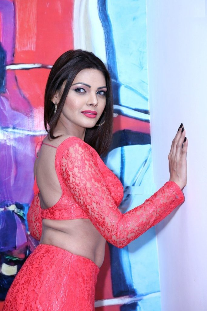 Sherlyn Chopra Sexy Pics In Backless Clothes