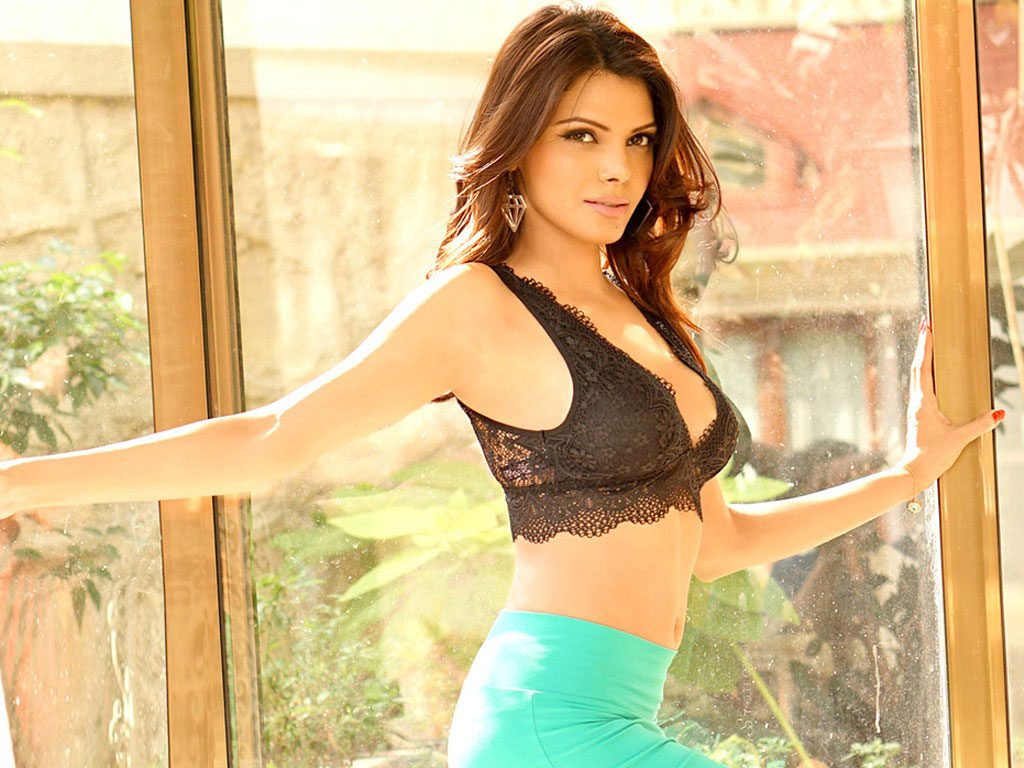 Sherlyn Chopra Spicy Navel Pics In Bra Panty