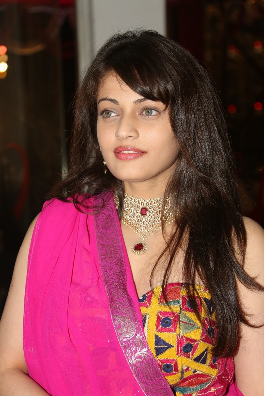 Sneha Ullal Spicy Navel Pictures Download