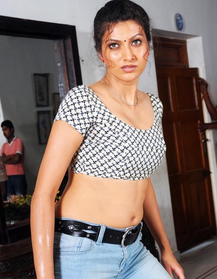 Hamsa Nandini Hot Spicy Navel Pics