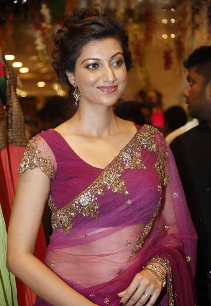 Hamsa Nandini Spicy Pics In Saree