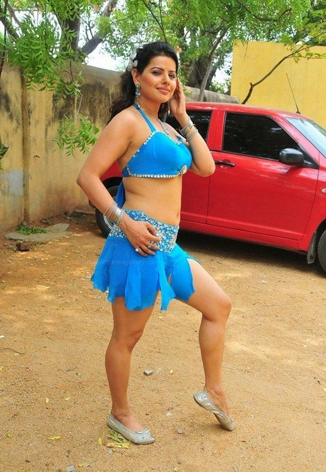 Madhu Sharma Sexy Thigh Legs Pictures