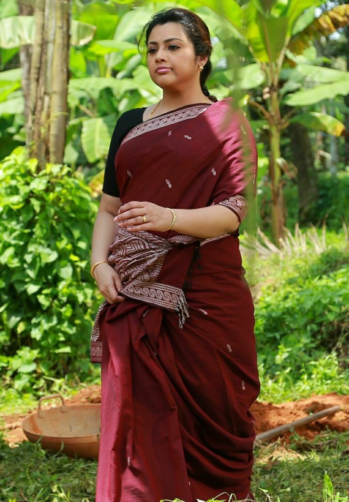 Meena Hot Images In Saree