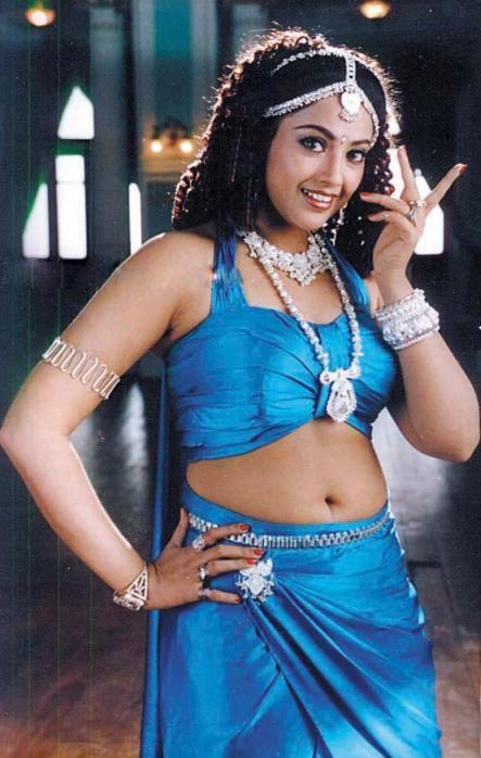 Meena Spicy Navel Pics In Saree
