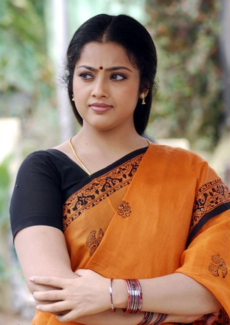 Meena Sweet Pics In Saree