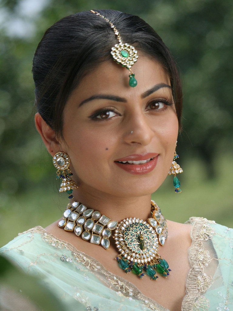 Neeru Bajwa In Desi Look Pics