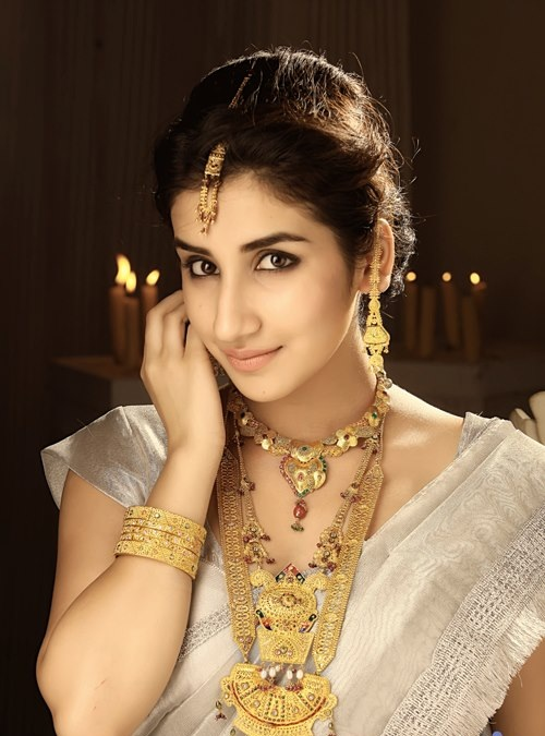 Parul Gulati In Saree Wallpapers