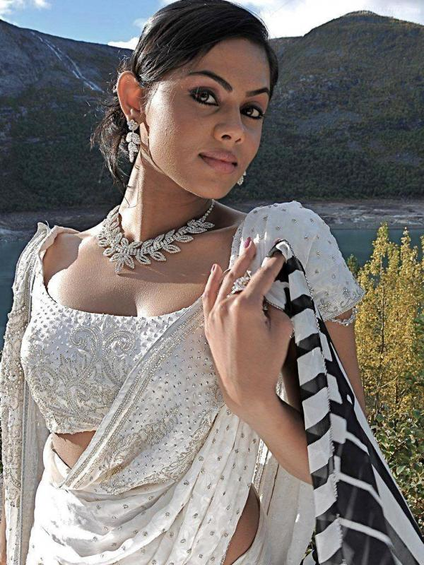 Karthika Nair In Bra Pics