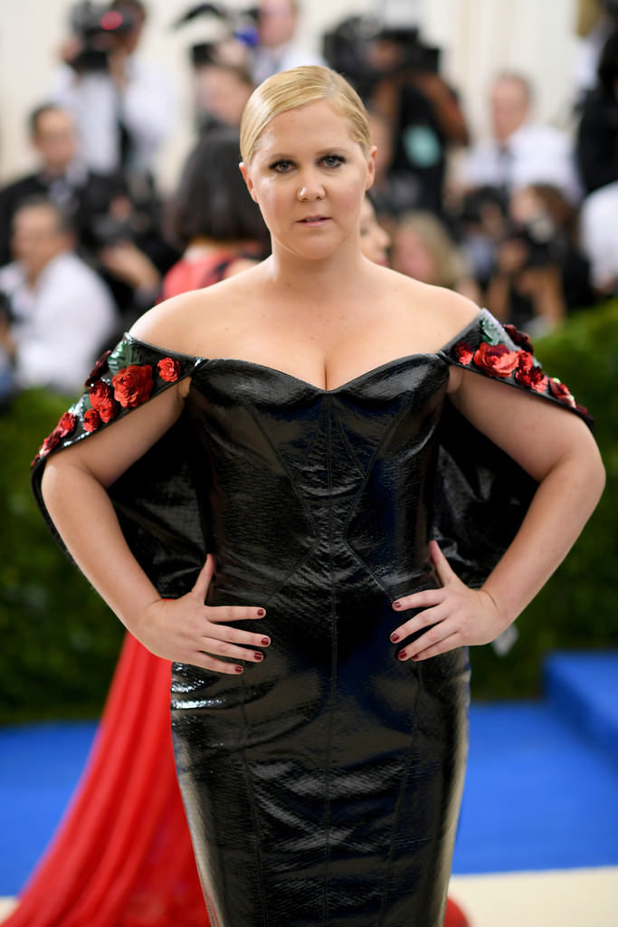 Amy Schumer Gown Pics