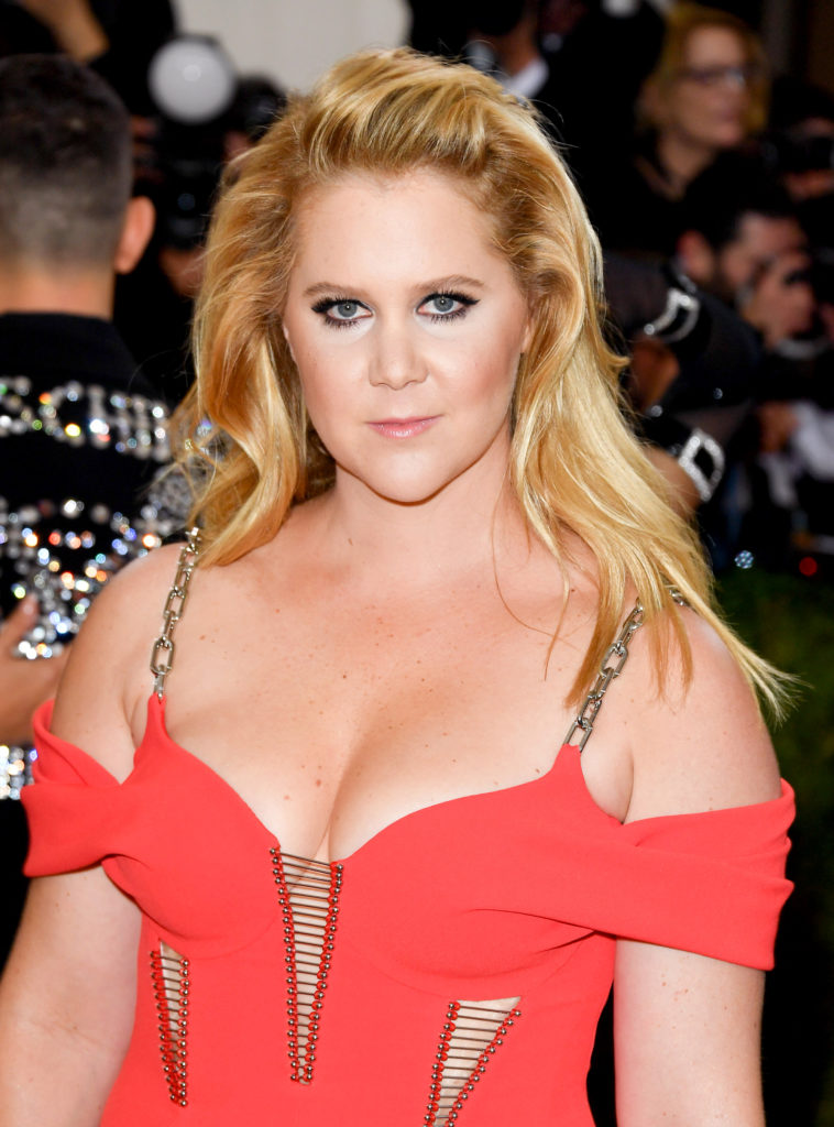 Amy Schumer Lingerie Pics