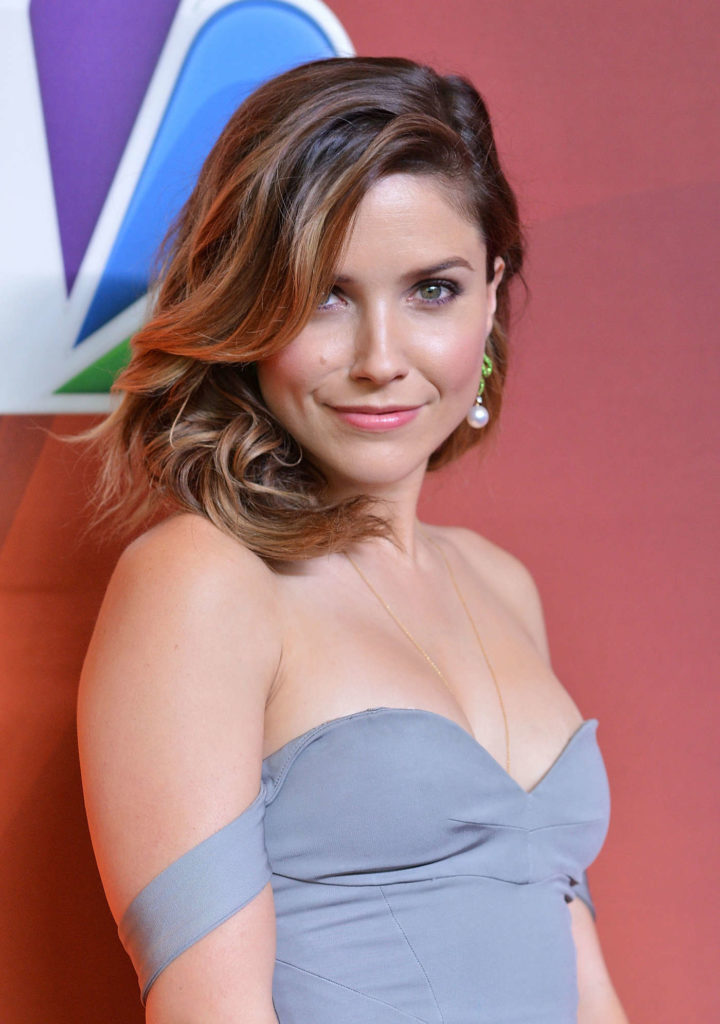 Sophia Bush Bra Cleavage Images