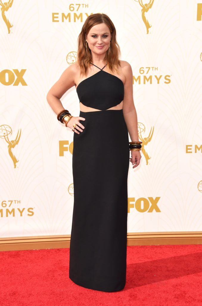 Amy-Poehler-Gown-Wallpapers