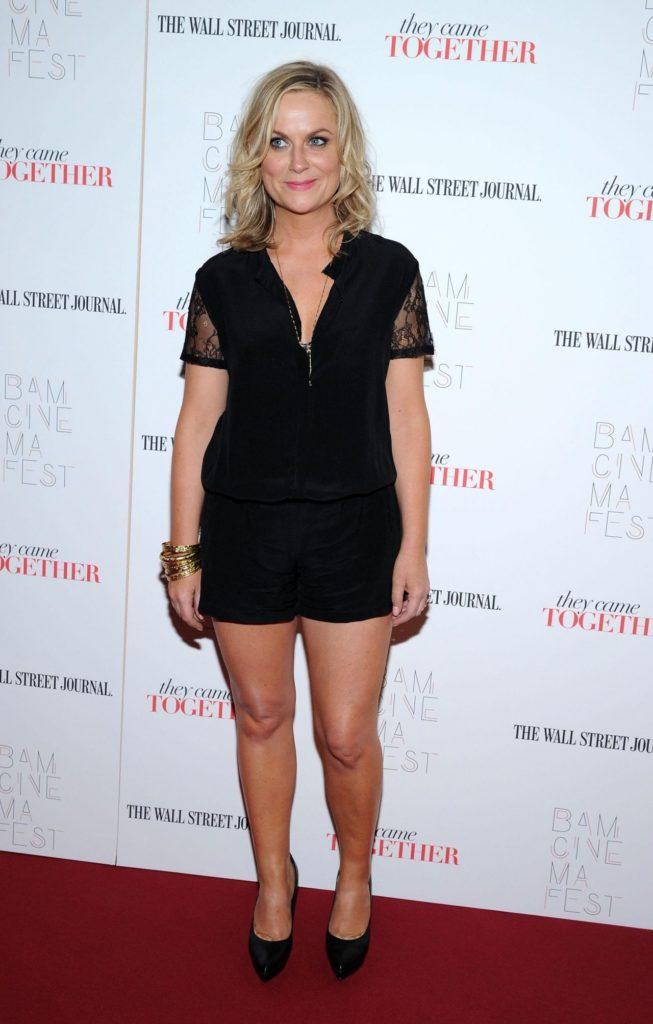 Amy-Poehler-Skirt-Pics