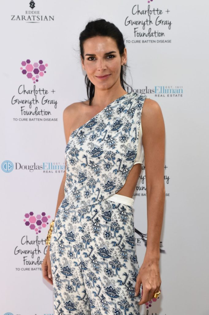 Angie-Harmon-Images