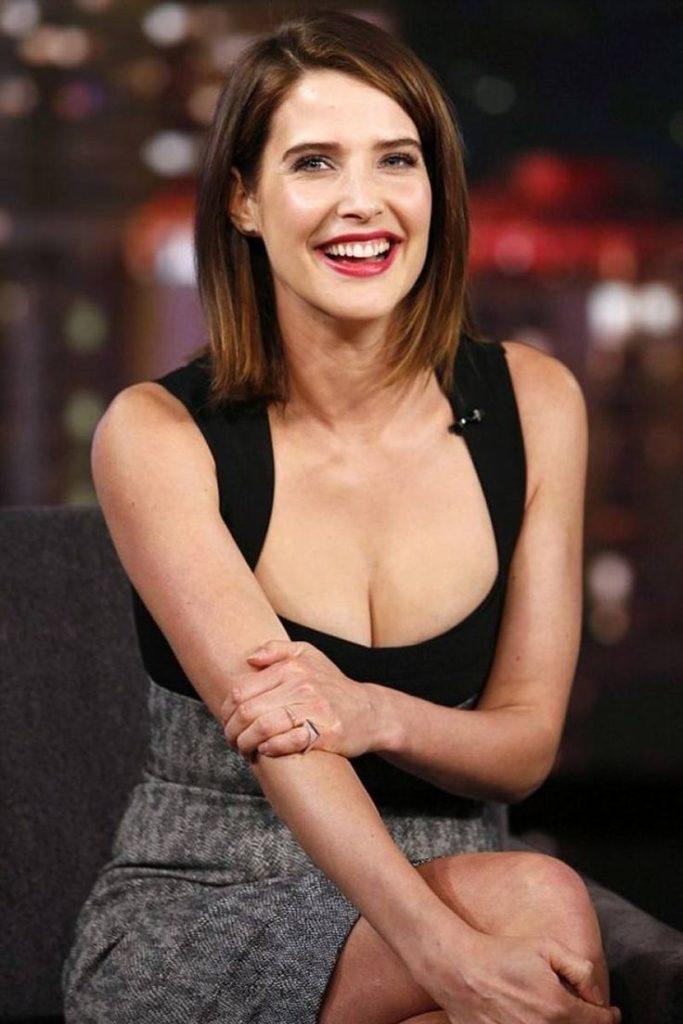 Cobie-Smulders-Breast-Photos